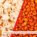 diferencia-en-el-maiz-de-los-kikos-y-palomitas